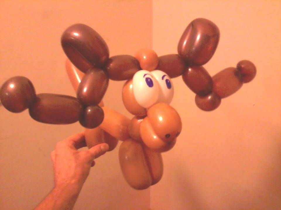 Balloon Moose